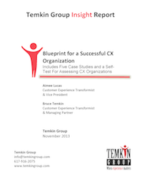 1311_BlueprintForCXOrgStructure_COVER