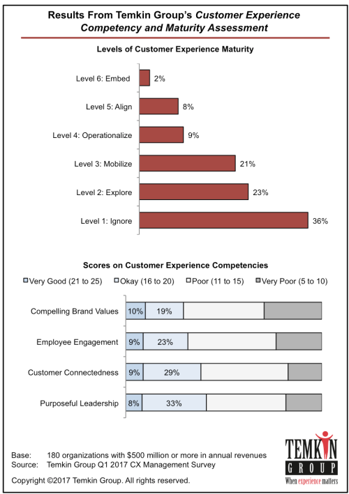 results from customer experience competency and maturity assessment